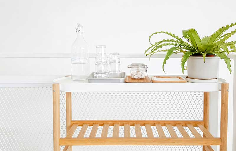 houseplant and water